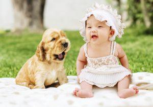 baby og hund