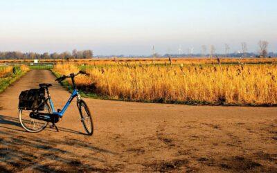 Find tilbud på Elcykler til Black Friday